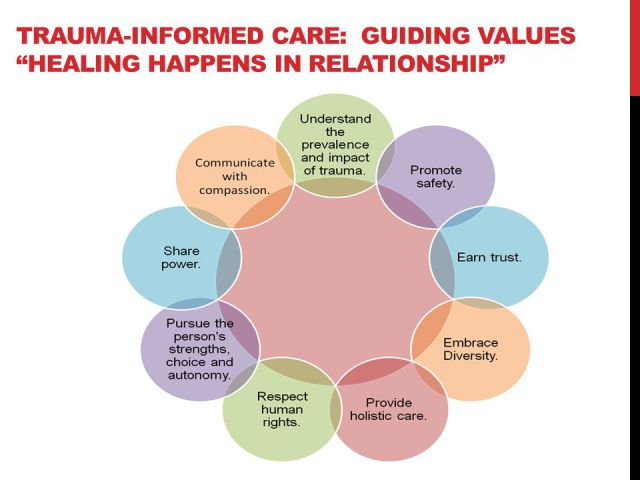 trauma-impact-values